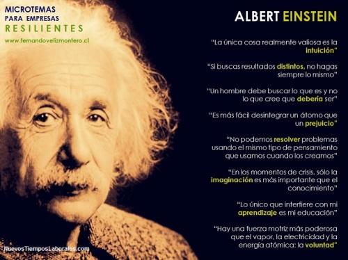 MicroTemas Empresas Resilientes - Albert Einstein
