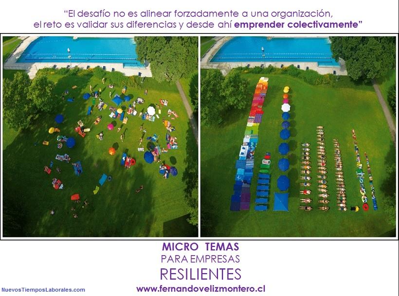 MicroTemas Empresas Resilientes - Construir Organizaciones