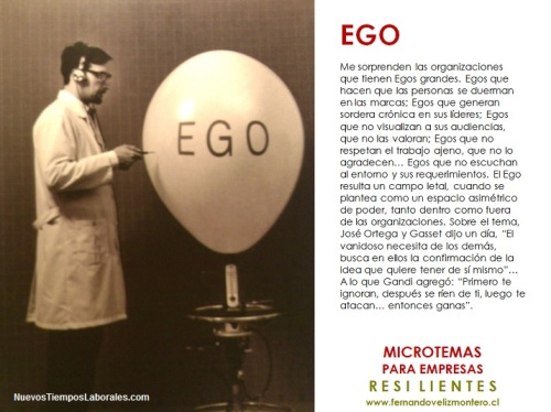 MicroTemas Empresas Resilientes - Ego
