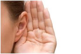 Oreja escucha